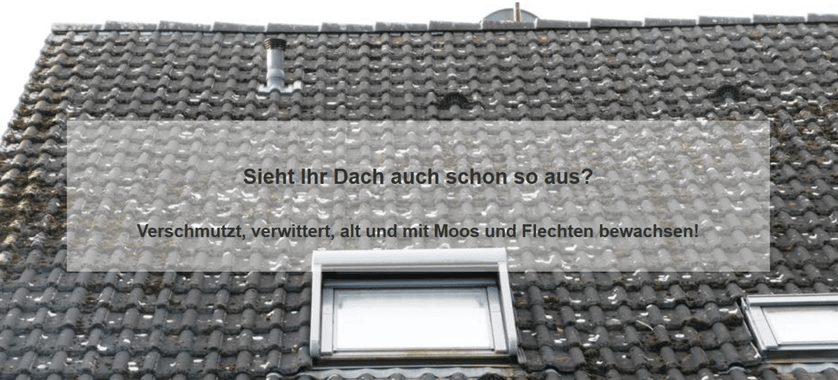 Dachprobleme aus  Tübingen: Schäden an der Oberfläche, Ziegel, Dachsteine