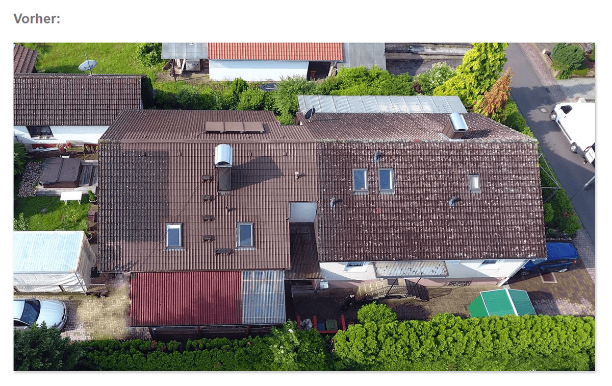 Dachrenovierer, Dachrenovierung
